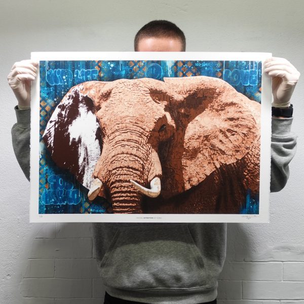 ELEPHANT II BIG FIVE PRINT EDITION